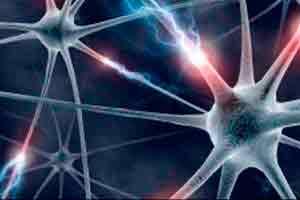 Introdução à Neurociência e sua influência na Psicanálise