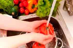 Introdução à Manipulação de Alimentos - Básico
