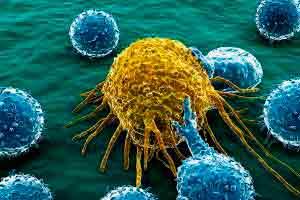 Introdução a cultura de células