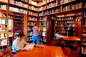 Biblioteca e Informação